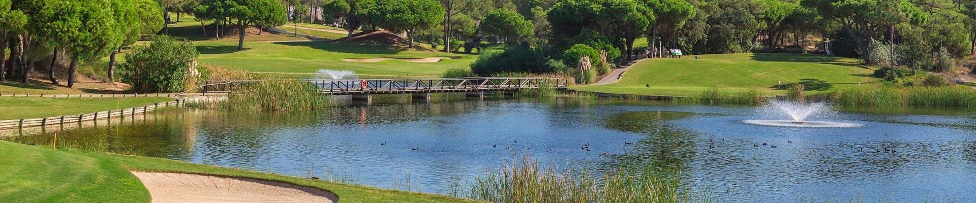 Pond Maintenance FAQs