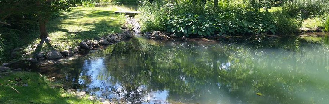 Environmental Pond Cleaning Services