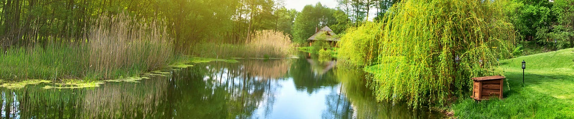 A gorgeous example of how refreshed pond cleaning will make your pond appear