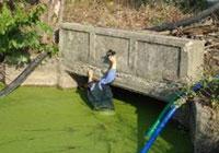Pond Maintenance & Hydraulic Dredging